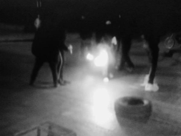 Chile : iniciando la jornada internacional corte de calle por los animales.