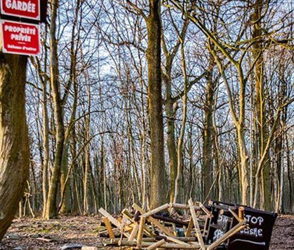 15 torres de caza destruidas en Bélgica.